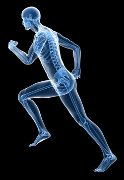 running gait analysis Physical Solutions